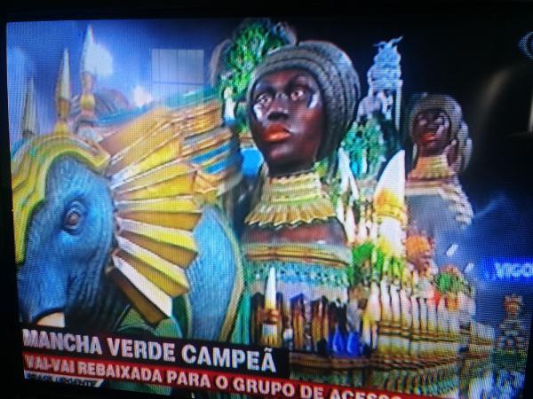 Mancha Verde é a campeã do Carnaval de São Paulo