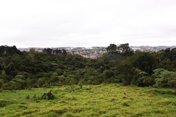 Embu das Artes possui 59% de seu território em área de Proteção aos Mananciais
