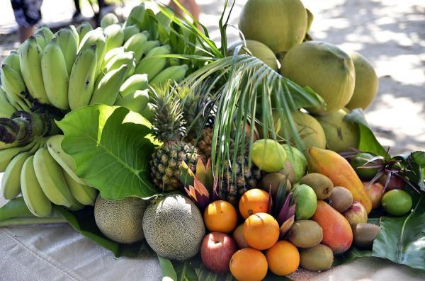 Saiba como cultivar frutas na sua casa ou apartamento