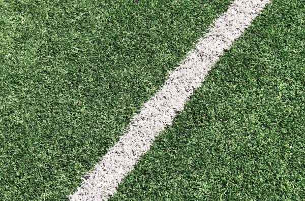 Palmeiras busca reencontrar a confiança com novas transferências