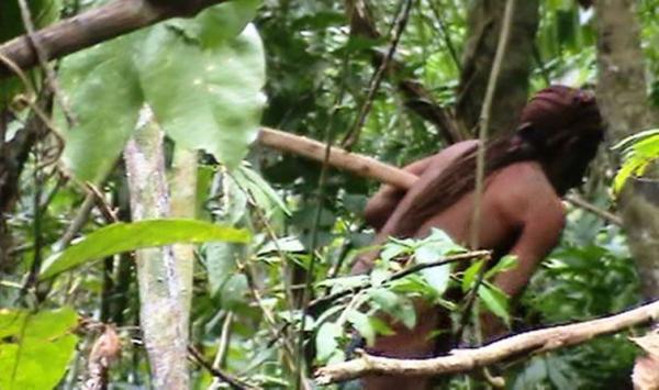 Funai divulga imagens de índio Tanuru isolado na Amazônia