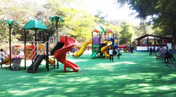 Parque das Hortênsias é um ótimo lugar para um passeio agradável em Taboão da Serra