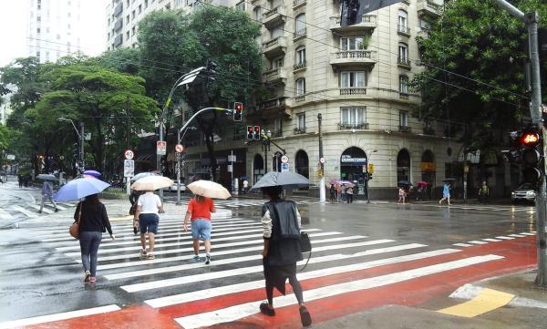 Chuva forte em São Paulo teve queda de arvores e alagamentos - Foto: Elizeu T. Filho