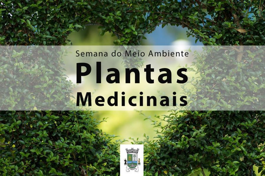 Semana do Meio Ambiente em Itapecerica da Serra começa com Plantas Medicinais
