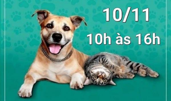 Feira de adoção de cães e gatos acontece em Taboão da Serra neste sábado, 10