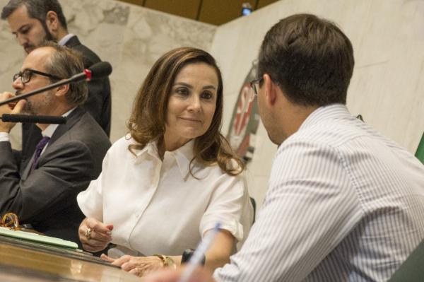 Deputada Analice Fernandes preside a Alesp e consegue aprovação da LDO